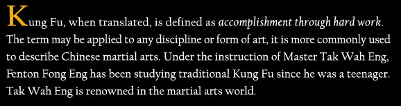 Kung Fu definition